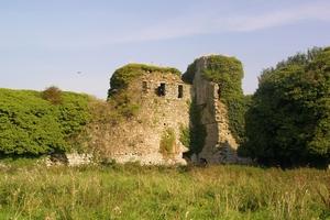 Clonmore Castle, Carlow